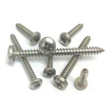 Stainless Steel Pan Head Self Tapping Screws